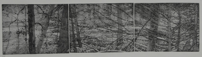 etching titled Nisqually River, Mount Rainier National Park